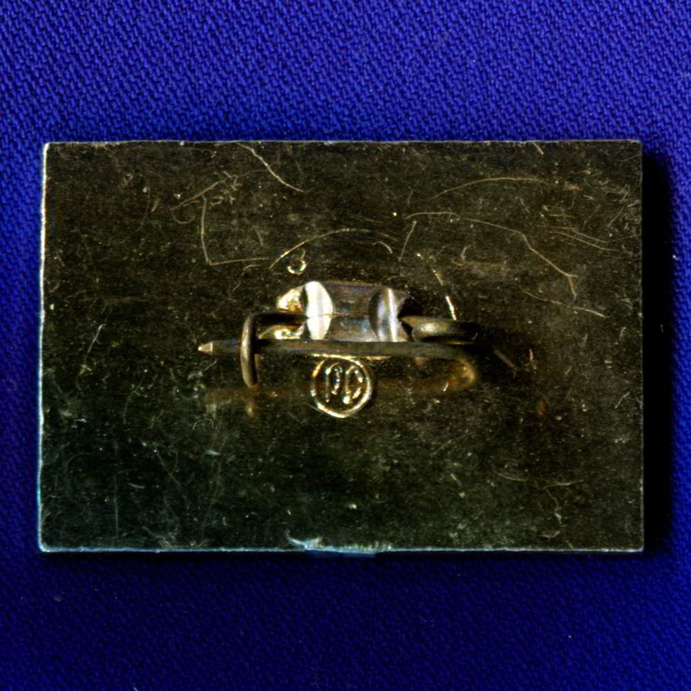 Значок «50 лет УПИ» Алюминий Булавка - 1