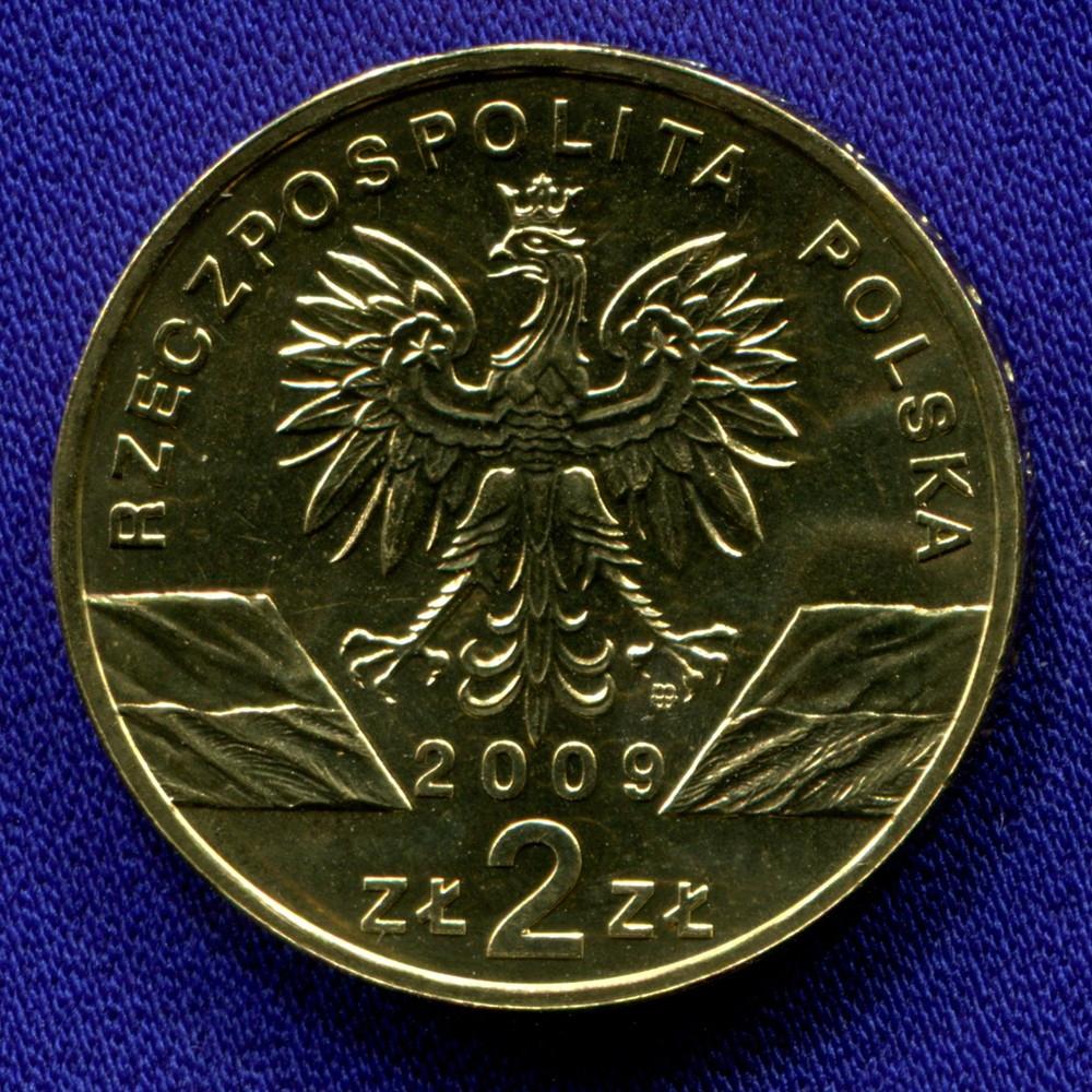 Польша 2 злотых 2009 UNC Европейская зеленая ящерица - 1