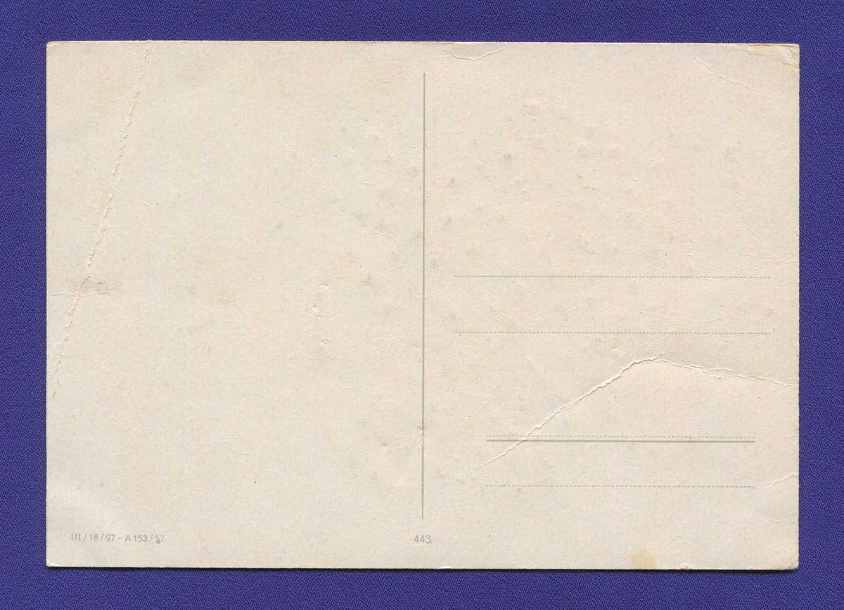 Открытка: Натюрморт. Цветы в вазе. / Незаполнена / 1957 года выпуска - 1