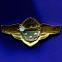 Знак «Классный специалист» 3 класс Легкий металл Булавка - 1